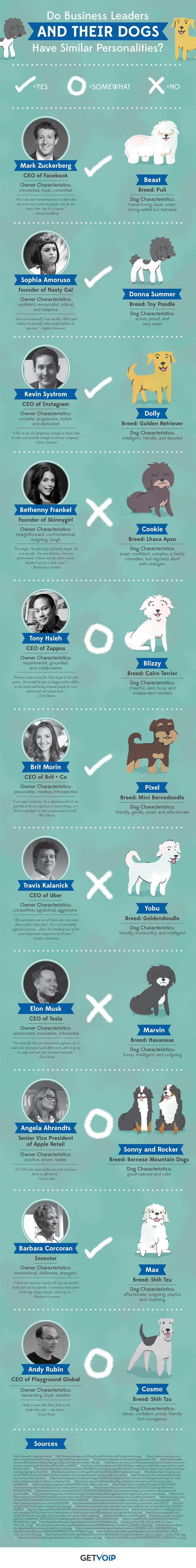 The-dogs-of-the-world's-most-successful-business-leaders
