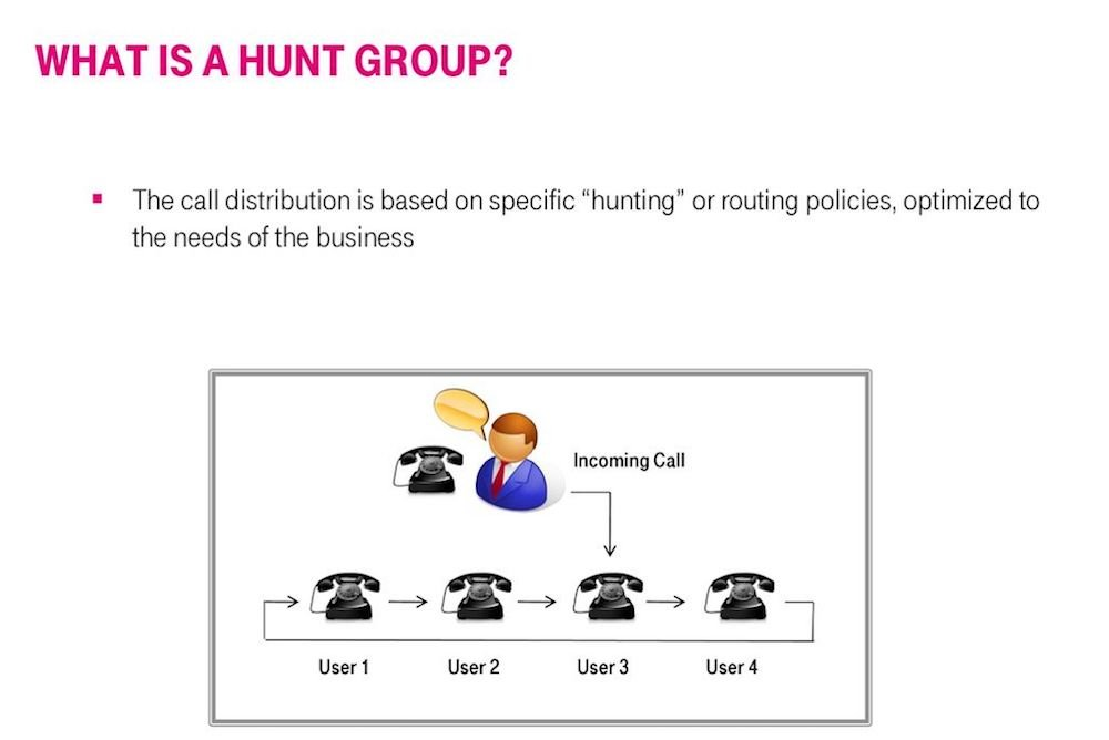What is a hunt group