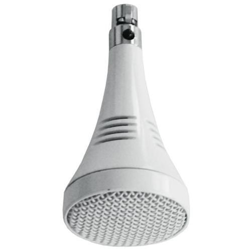 ceiling-mic-ex