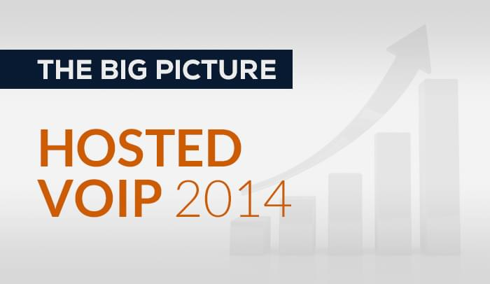 The Big Picture of The Hosted VoIP Market in 2014