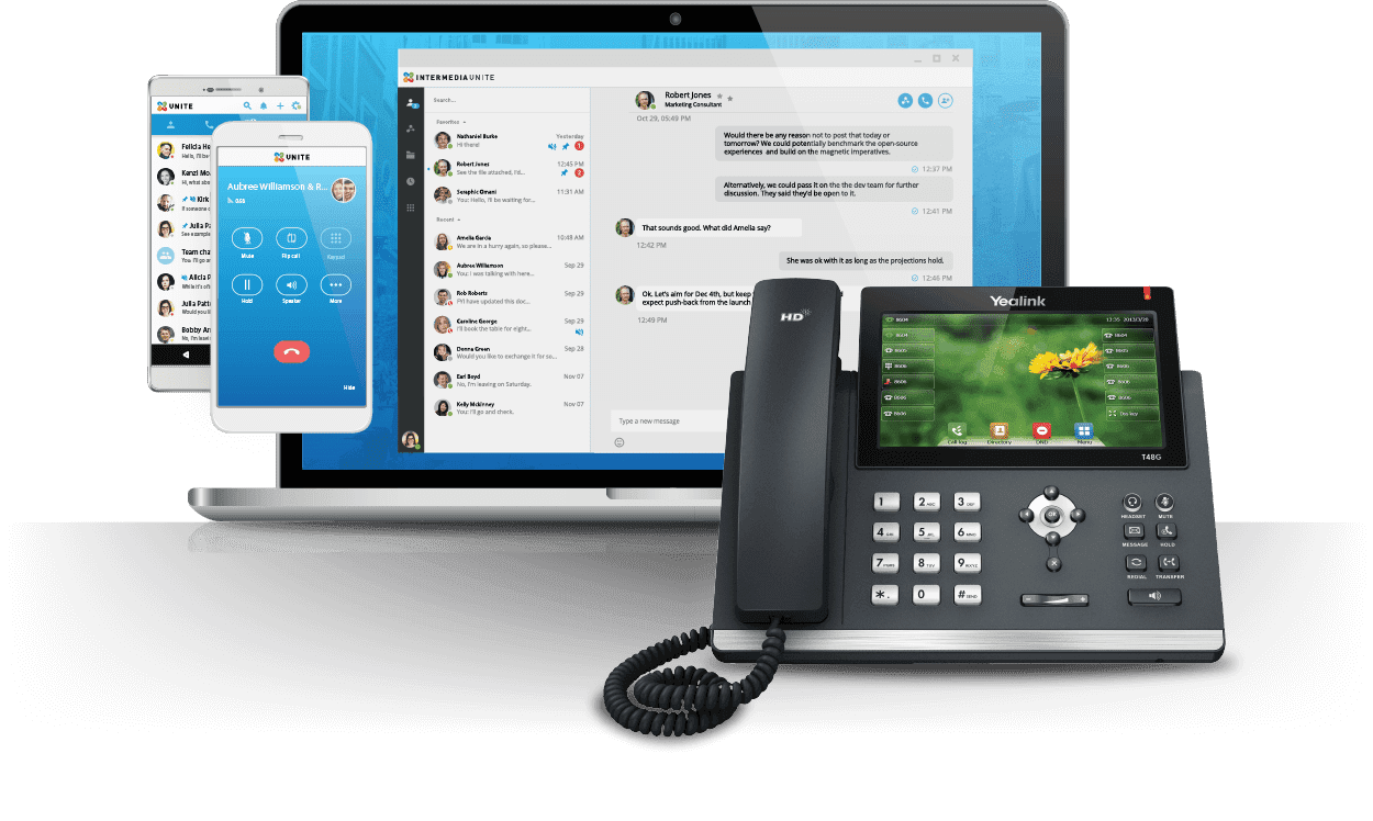 intermedia voip features
