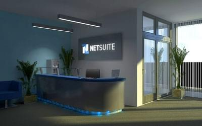 Netsuite stock options