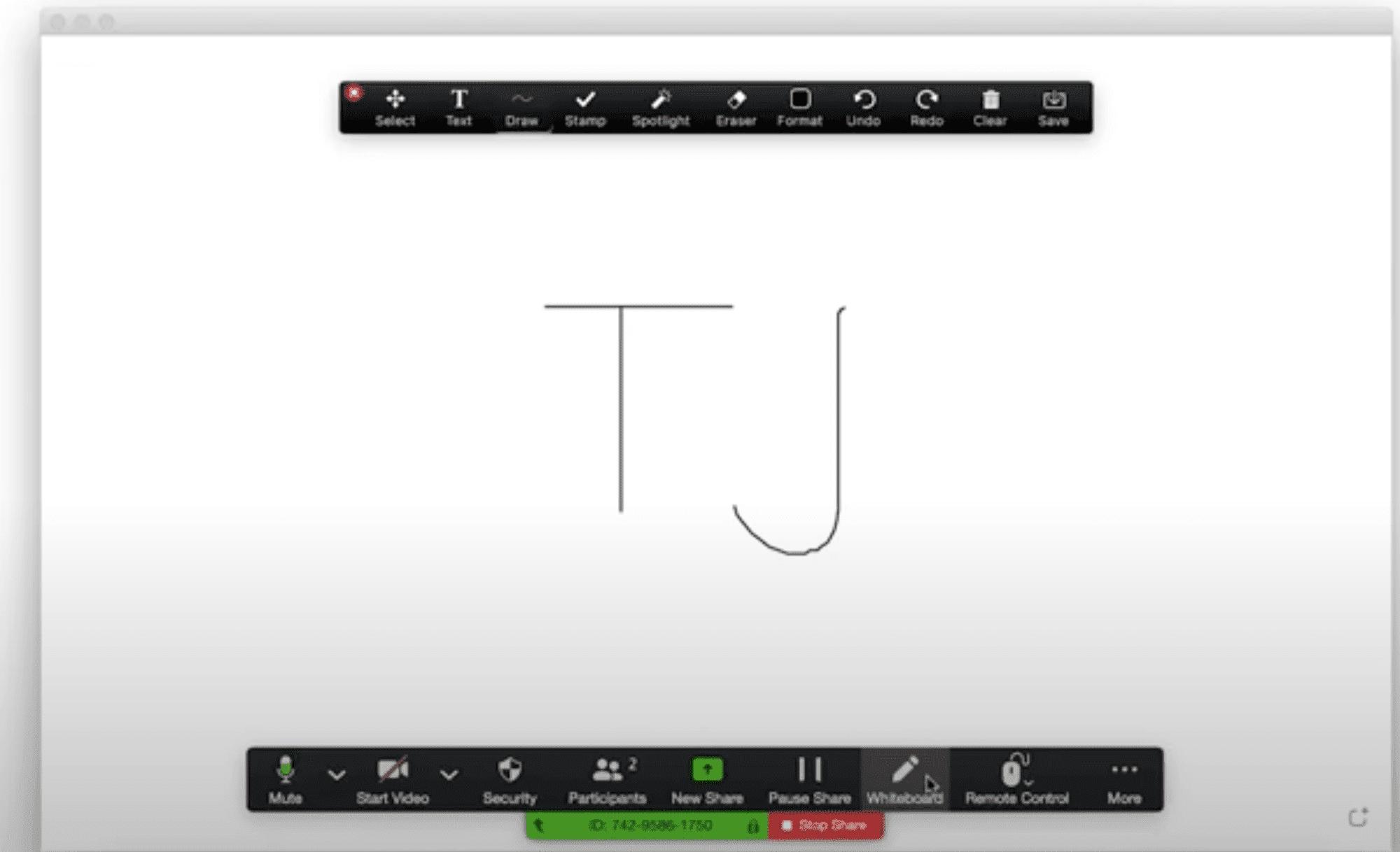 Zoom whiteboard tool